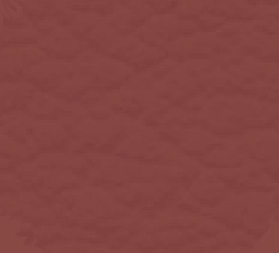 Bordeaux - Effet cuir